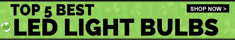 Top 5 Best LED Light Bulbs